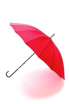 ピンドット長傘