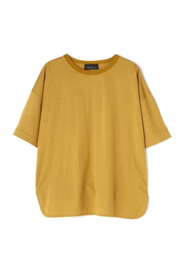 コットン天竺Tシャツ