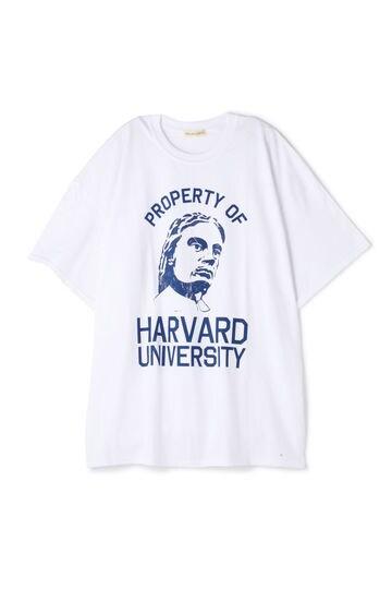 HARVARD ビッグTシャツ