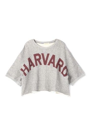 HARVARD スウェットTシャツ