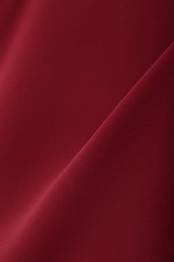 [WEB限定商品][ウォッシャブル]フレアスリーブブラウス【UNDER15000】