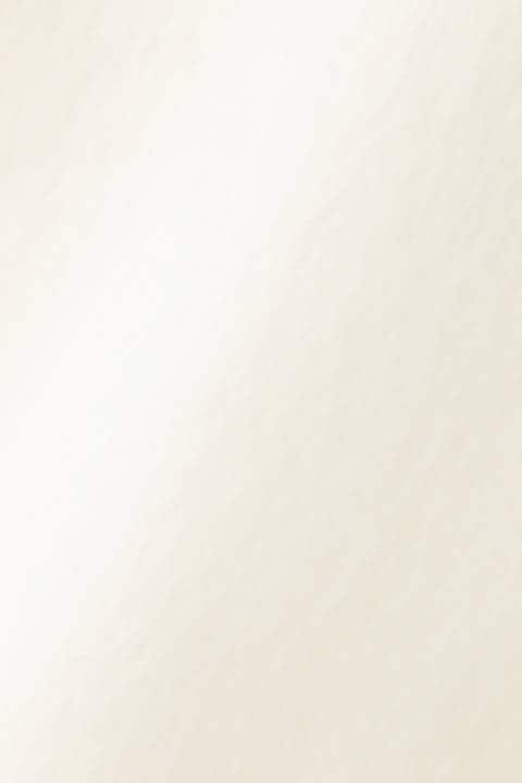 【直営店舗限定アイテム】部分表裏切替 パルキー天竺起毛 モックネックプルオーバー (WOMENS advanced pac)