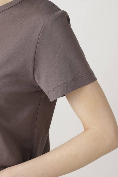 新きょう綿Tシャツ
