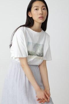 【先行予約 4月中旬-下旬 入荷予定】フォトプリントTシャツ