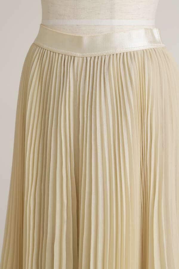 Sheer Pleated Pants