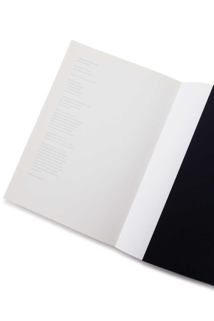 Thomas Ruff / nature morte Catalogue4