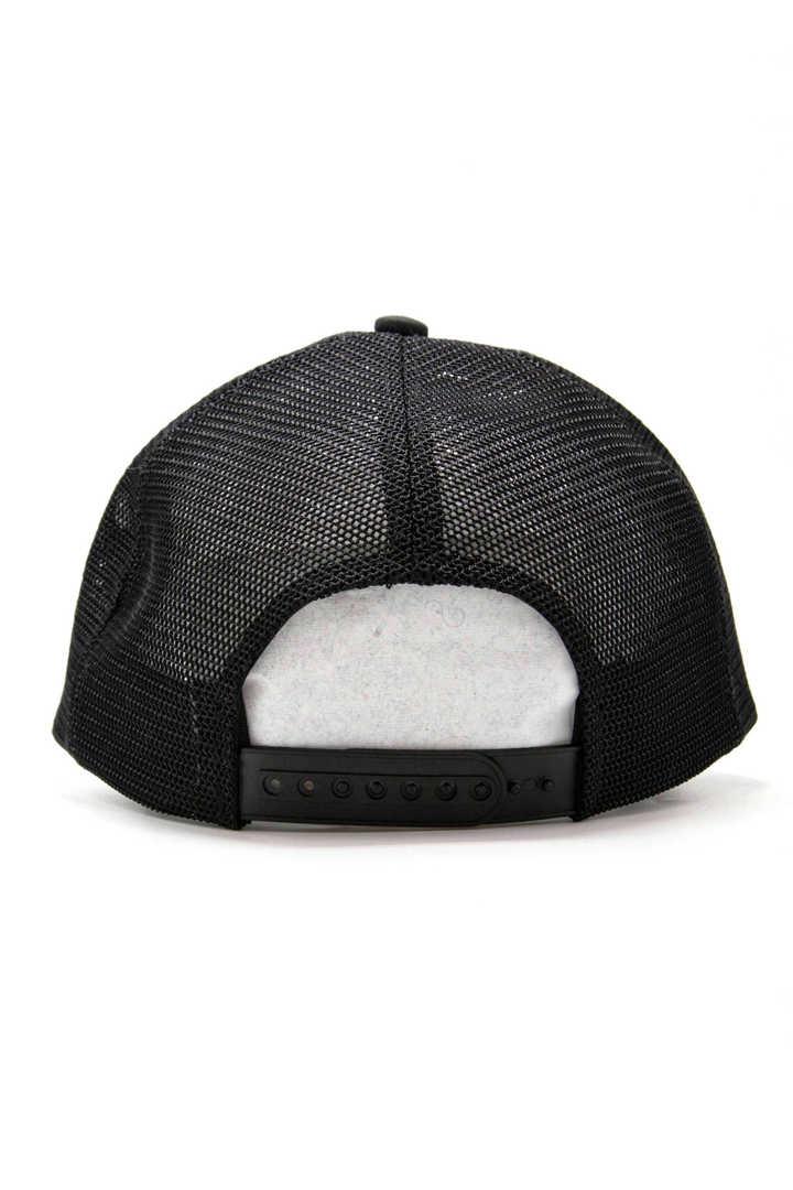 EM/ER-CAP