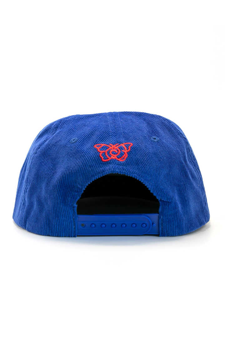 THE BLUE&RED CONDUCTORS HAT